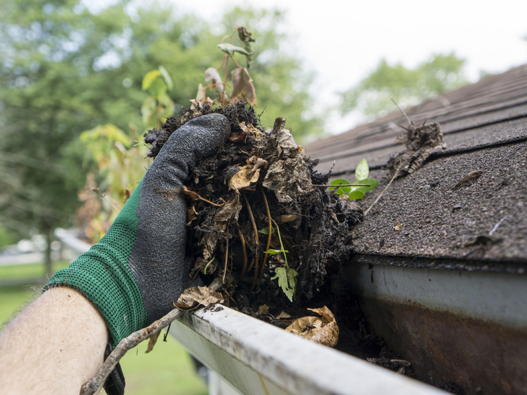 RainWater Solutions keeps your gutters flowing smoothly